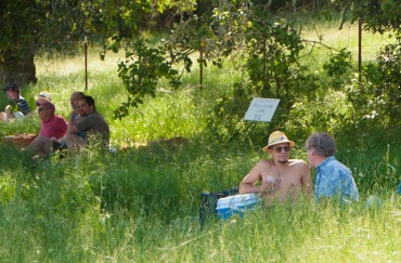 The modern California version of Manet's dejuner sur l'herbe.