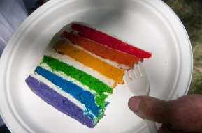 A cake celebrate the rainbow coalition.