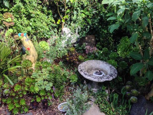 A tiny part of the garden.