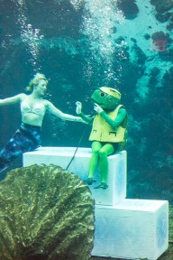 Little Mermaid and a turtle.