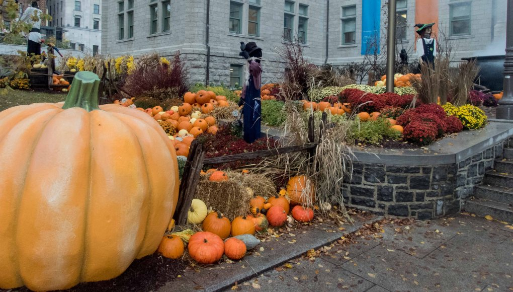 This isn't false perspective--that's a 5 foot tall pumpkin